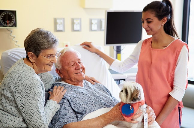 pet therapy for seniors; live your retirement