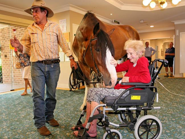 Horses Visiting a Retirement Home is Love