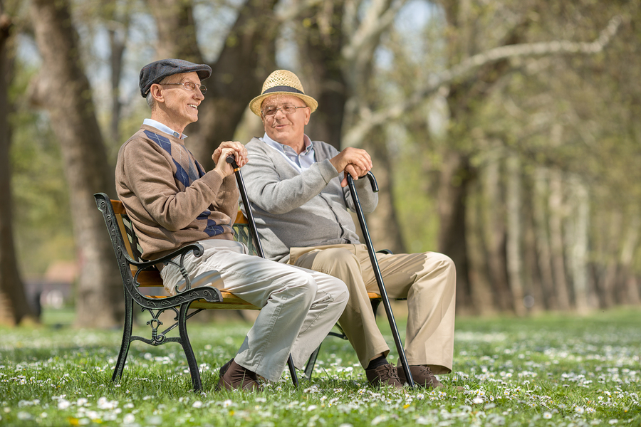 The Importance of Social Interactions for Senior Health