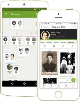 Search your ancestors and create your family tree.